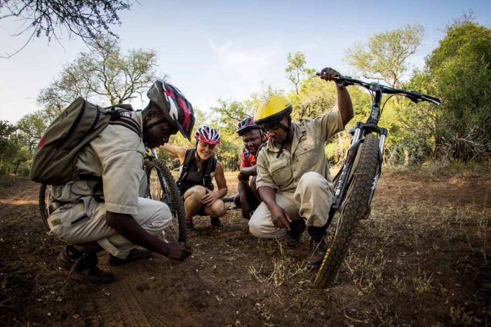 Ndlovu Camp 9 afrique du sud ndlovu camp10