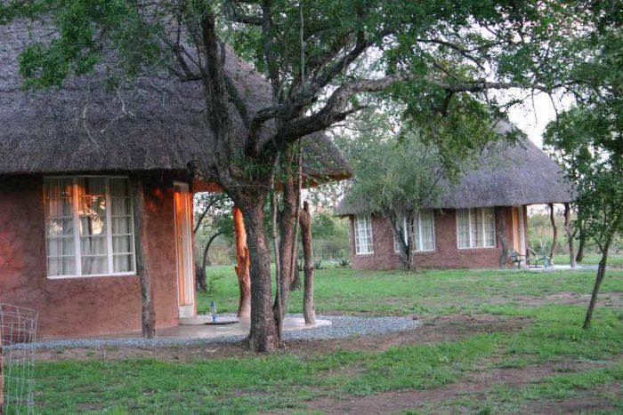 Ndlovu Camp 1 afrique du sud ndlovu camp3