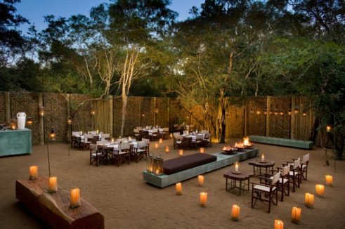 Phinda Forest Lodge 9 afrique du sud phinda forest lodge1