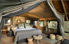 Tanda Tula Safari Camp 2 afrique du sud tanda tula safari camp2