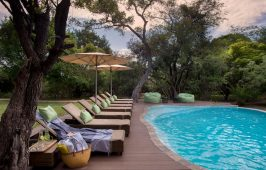 Tanda Tula Safari Camp 3
