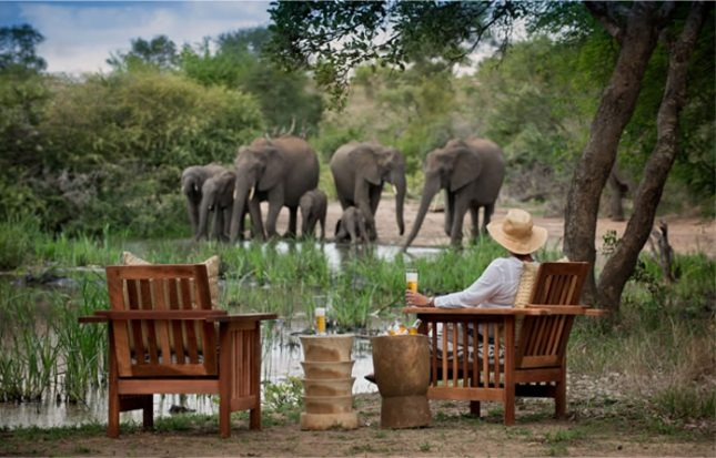 Tanda Tula Safari Camp 4