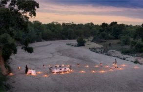 Tanda Tula Safari Camp 8 afrique du sud tanda tula safari camp8