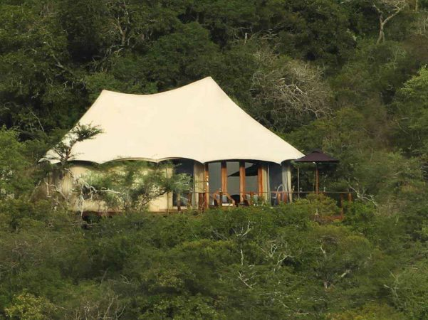 Thanda Tented Camp 1 afrique du sud thanda tented camp1