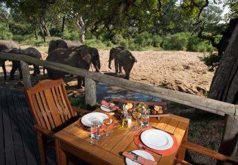 Tintswalo Safari Lodge 2