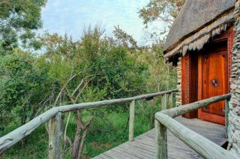 Tintswalo Safari Lodge 10