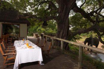 Tintswalo Safari Lodge 4