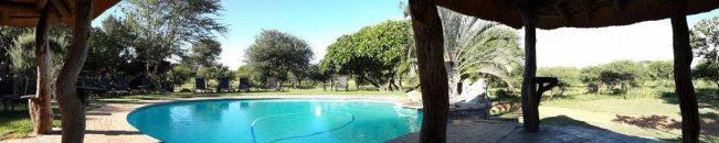 Tshukudu Game Lodge 5 afrique du sud tshukudu game lodge6