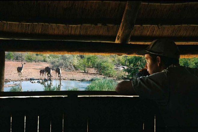Mashatu Tent Camp 6 botswana mashatu tent camp4