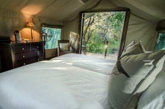 Mashatu Tent Camp 3 botswana mashatu tent camp7
