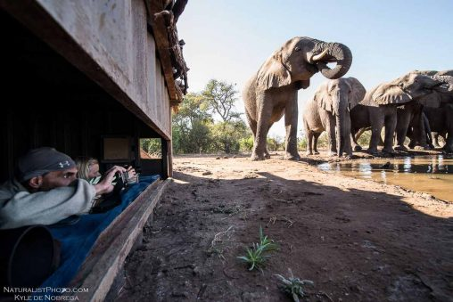 Mashatu Tent Camp 8 botswana mashatu tent camp8