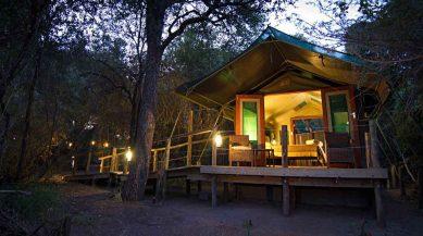 Mashatu Tent Camp 1 botswana mashatu tent camp9