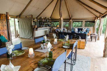 Sango Safari Camp 15 botswana sango safari camp11