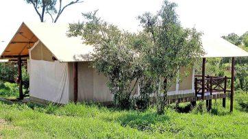 Ashnil Mara Camp 3 kenya ashnil mara camp8