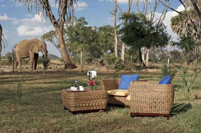 Ashnil Samburu Camp 4 kenya ashnil samburu camp4