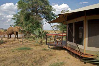 Ashnil Samburu Camp 5 kenya ashnil samburu camp5