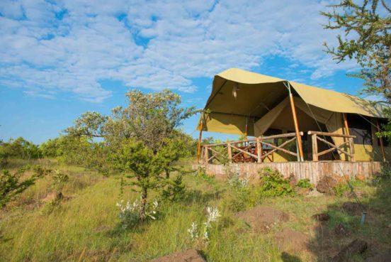 Kilima Camp 6 kenya kilima camp6