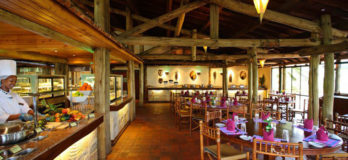 Sarova Lion Hill Game Lodge 1 kenya sarova lion hill lodge1