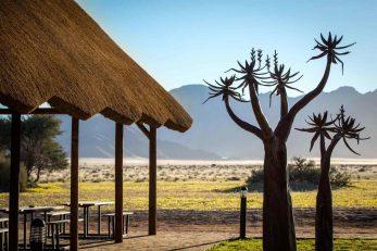 Desert Camp 3 namibie desert camp16
