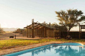 Desert Camp 2 namibie desert camp2