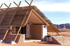 Desert Quiver Camp 6