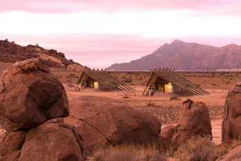 Desert Quiver Camp 8