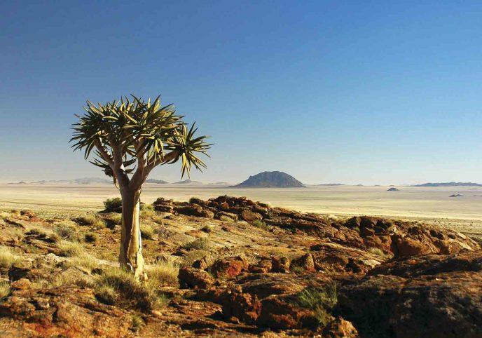 Klein Aus Vista Eagle's Nest 1 namibie klein aus vista eagles nest3