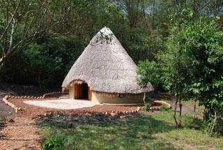 Nos lodges en Ouganda 17 ouganda enjojo lodge0