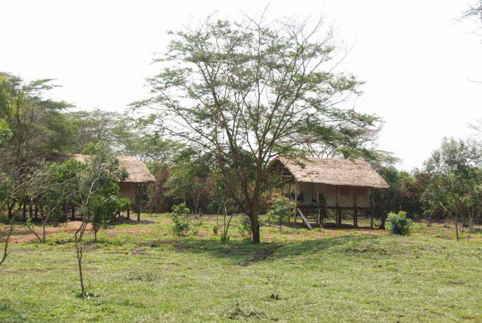 Enjojo Lodge 9 ouganda enjojo lodge9