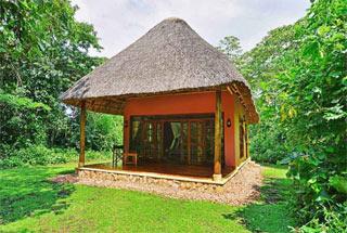 Nos lodges en Ouganda 13 ouganda primate lodge0