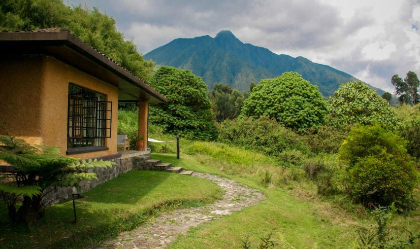 Sabynyo Silverback Lodge 11
