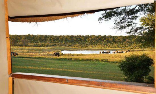 Ivory Lodge 11 zimbabwe ivory lodge10