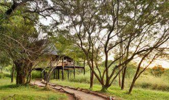 Ivory Lodge 12 zimbabwe ivory lodge12