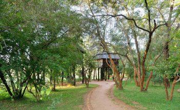 Ivory Lodge 5 zimbabwe ivory lodge5