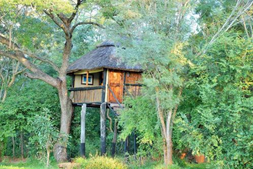 Ivory Lodge 10 zimbabwe ivory lodge8