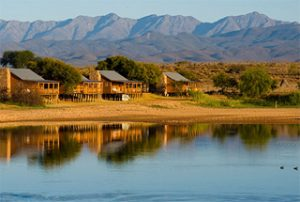 Afrique du Sud 8 afrique du sud de zeekoe0