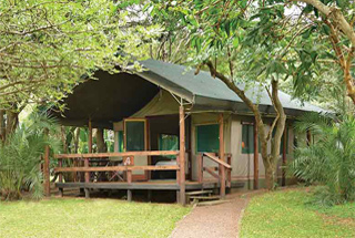 Nos lodges en Afrique du Sud 79 afrique du sud falaza game park and spa