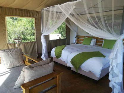 Honeyguide Khoka Moya Camp 9 afrique du sud honeyguide khoka moya camp11