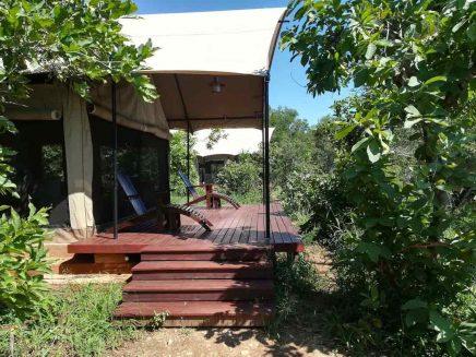 Honeyguide Khoka Moya Camp 6 afrique du sud honeyguide khoka moya camp5