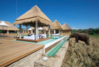 Lodges Kapama et Tshukudu 3 afrique du sud kapama river lodge0