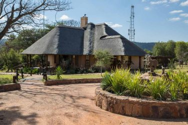 Kololo Game Reserve 15 afrique du sud kololo game reserve14