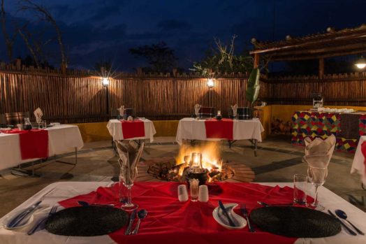 Kololo Game Reserve 19 afrique du sud kololo game reserve16