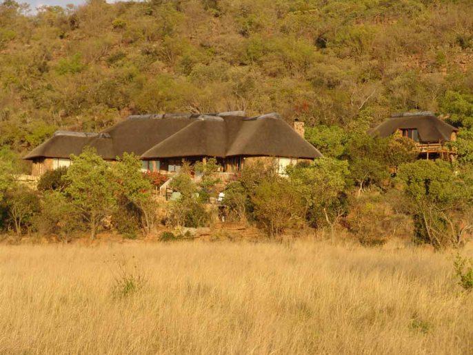 Kololo Game Reserve 1 afrique du sud kololo game reserve2