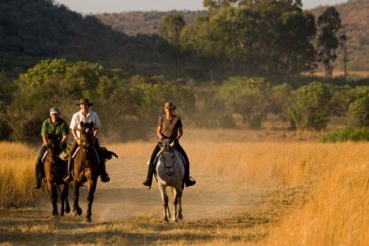 Kololo Game Reserve 20 afrique du sud kololo game reserve20