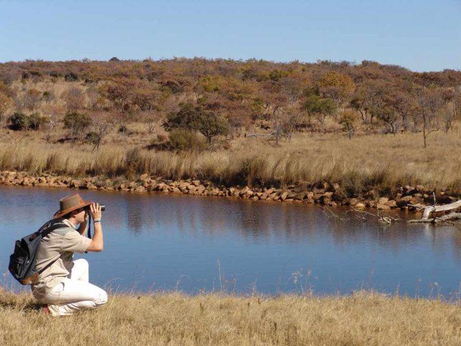 Kololo Game Reserve 13 afrique du sud kololo game reserve4