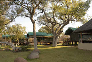 Lodges Thornybush 5 afrique du sud nkelenga tented camp0