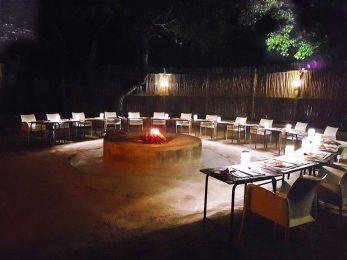Pezulu Tree House Lodge 2 afrique du sud pezulu tree house lodge1