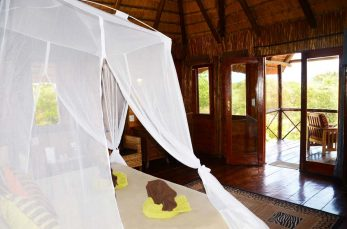 Pezulu Tree House Lodge 3 afrique du sud pezulu tree house lodge2