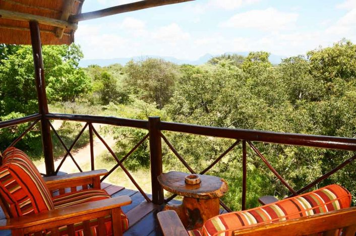 Pezulu Tree House Lodge 9 afrique du sud pezulu tree house lodge3