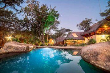 Pezulu Tree House Lodge 5 afrique du sud pezulu tree house lodge5